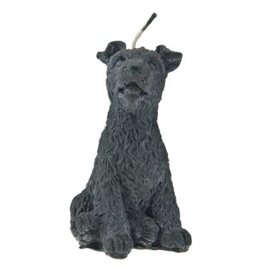Hund Melly schwarz